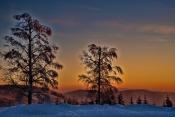 Winter an der Schwarzwaldhochstrasse
