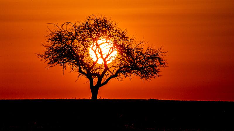 deutsches Afrika
